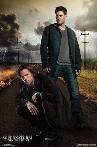 Trends International Supernatural Dean & Sam Wall Poster 22.375