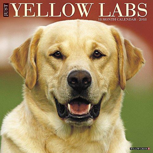 Just Yellow Labs 2018 Calendar