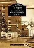 Eloise: Poorhouse, Farm, Asylum and Hospital  1839-1984  (MI)   (Images of America)