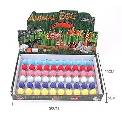 HASAKA WINGO 60PCS Hatching Growing Dinosaur Eggs Hatching Toys Add Water Magic Cute Children Toy Colorful from HASAKA