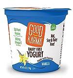 vanilla soy yogurt - Good Karma Dairy Free Yogurt, Vanilla, 5.52 Ounce (Pack of 12)