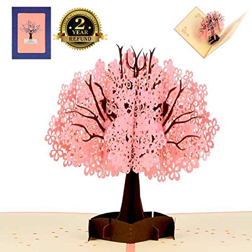 3D Pop up Card Cherry Blossom Greeting Cards Thank-You Card with Extra Envelop for Valentine's Day, Mother's Day, Graduation, Anniversary, Thanksgiving Day, Birthday Sister Mom Girl Friend (Valentines Birthday Cards)