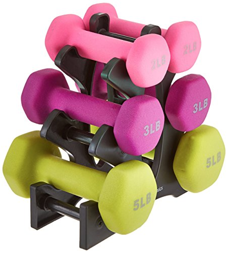 AmazonBasics-20-Pound-Dumbbell-Set-with-Stand