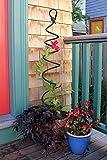 Achla Designs FST-01 Spiral Wrought Iron Garden