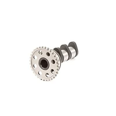 Hot Cams 4089-2IN Camshaft: Automotive