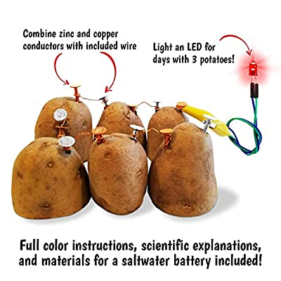 Salt Water + Potato + Fruit Battery STEM Kit for boys and girls age 8-10 to learn chemistry & electronics with vinegar, soda, lemons, and more. Great family activity or homeschool lesson!: Toys & Games