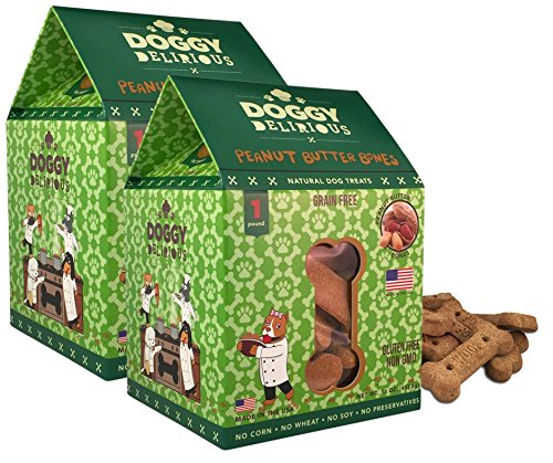 Wet Noses Doggy Delirious All Natural Dog Treats, Made in USA, 100% USDA Certified Organic, Non-GMO Project Verified, 14 Oz Box, Grain-Free Flavor, 2-Pack
