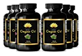 Anti fungal supplements - OREGANO OIL EXTRACT 1500mg - Oregano vulgares oil - 6 Bottles 360 Capsules