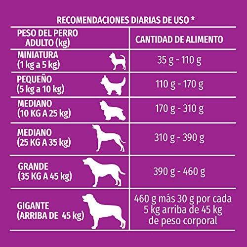 Dog Chow Comida para Perro Longevidad Senior Edad Madura Todos los Tamaños con Extralife 7.5 kg 6