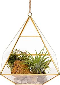 Glass Terrarium - Geometric Diamond Desktop Garden Planter by Mindful Design (Gold)