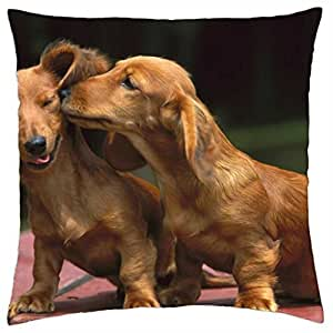 Dachshunds - Throw Pillow Cover Case (18