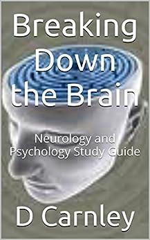 Brain Study Guide | CourseNotes