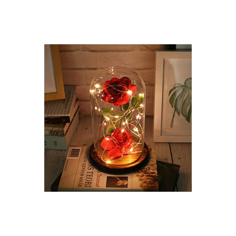 silk flower arrangements vibola beauty and the beast eternal rose in glass with dome cover led micro landscape for valentine's day mothers day anniversary birthday wedding (red)