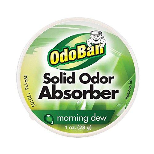 OdoBan 1 oz. Morning Dew Solid Odor Absorber
