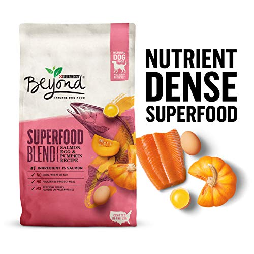 Purina Beyond Natural Dry Dog Food, Superfood Blend Salmon, Egg & Pumpkin Recipe - 14.5 lb. Bag