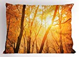 Lunarable Forest Pillow Sham, Fall Season Forest with Branches Sun Beam Woods Monochromic Scenic Nature Picture, Decorative Standard King Size Printed Pillowcase, 36 X 20 inches, Orange Brown