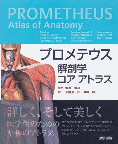 プロメテウス解剖学 コア アトラス
