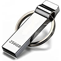 UsbDiood Thumb drive 256GB - Silver with Keychain Design / ZZ-YJb56
