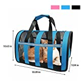 Soft Sided Cat Dog Carrier Airline Approved Bag Foldable Design with Adjustable Detachable Shoulder Strap for Small Breed Dogs Cats Kittens and Puppies, Blue