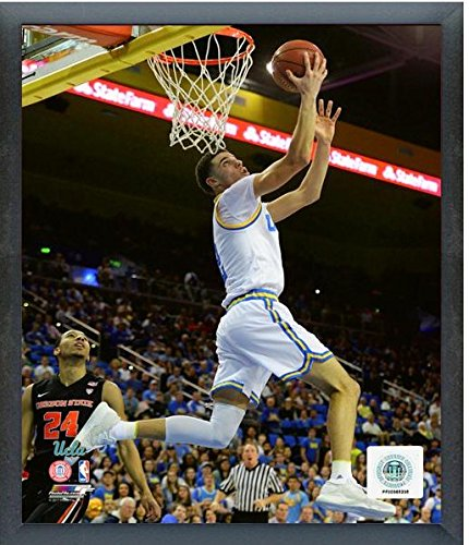 Lonzo Ball UCLA Bruins 2017 Action Photo (Size: 12