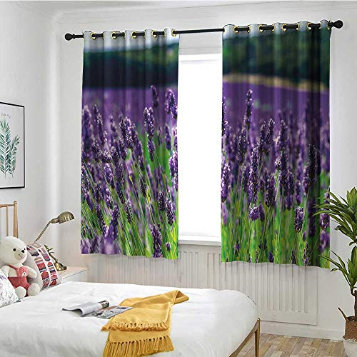 MaryMunger Lavender Grommet Window Curtain Scenic Field in France Fragrant Blooming Countryside Agriculture Rural Theme Simple Stylish W 63