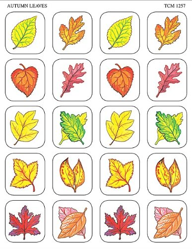 Teacher Created Resources Autumn Leaves Stickers, Multi Color (1257)