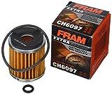 FRAM CH6097 ATV/Motorcycle Cartridge Oil Filter