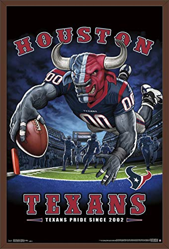 Trends International Houston Texans - End Zone 17 Wall Poster, 24.25