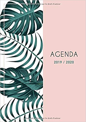 Amazon.com: Agenda 2019 2020: Grand Agenda 2019 2020 ...