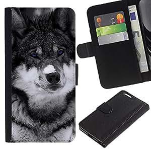 NEECELL GIFT forCITY // Billetera de cuero Caso Cubierta de protección Carcasa / Leather Wallet Case for Apple Iphone 6 PLUS 5.5 // Lindo observado azul del lobo