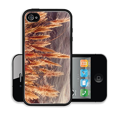 iPhone 4 4S Case Scan 580 Image 15482597045
