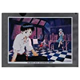 Neon Genesis Evangelion theater version Death and Rebirth clear file Ikari Shinji and Rei