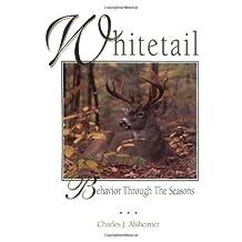 Whitetail Behavior Through the Seasons