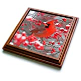 3dRose trv_251002_1 Northern Cardinal Male in Common Winterberry Bush in Winter 01 Trivet with Tile, 8 by 8''