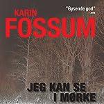 Jeg kan se i mørke   Karin Fossum
