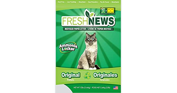Amazon.com: Bolsas de papel para aserrín para gatos ...