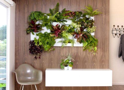 Amazoncom Urbio Happy Family Wall Planters