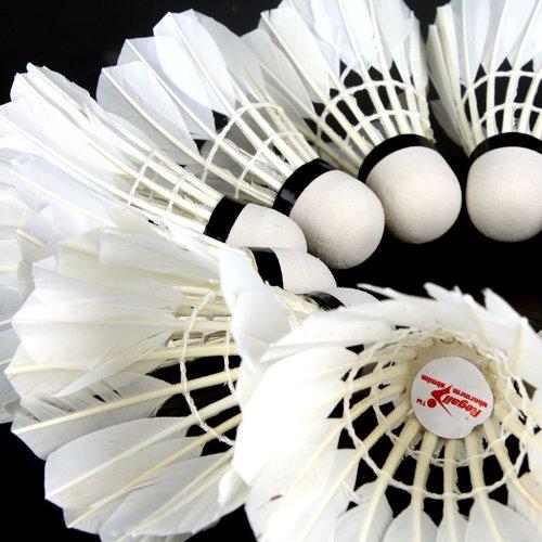 Docooler 12Pcs Training White Teal Feather Badminton Shuttlecocks