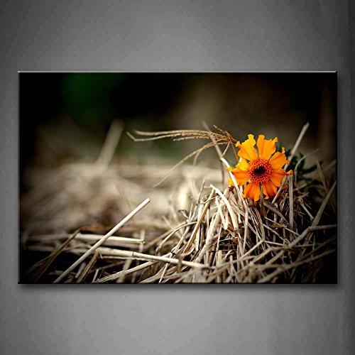 First Wall Art - Yellow Flower Reveal On Dry Grass Wall Art Painting Pictures Print On Canvas Flower The Picture For Home Modern Decoration -  8203440F