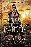 Accidental Raider: Book 2 in a LitRPG Swashbuckler Trilogy (Accidental Champion)