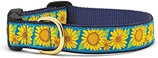 product image for Up Country Bright Sunflower Dog Collar