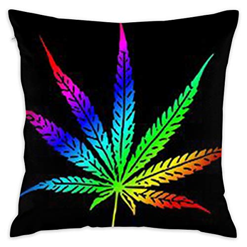 SARA NELL Velvet Throw Pillow Cases,Tie Dye Marijuana Leaf