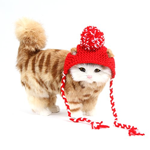 Sweet Devil Cat Hat Handmade Woolen Cute Caps Knitted Costume for Christmas Hollaween Parties,Red (Cute Devils Costume)