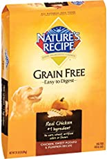 Abound Grain Free Chicken & Chickpea Recipe Cat Food Review