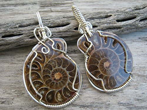 HIS and HERS Ammonite Fossil Pendant Necklaces, .925 Sterling Silver Fossil Pendants, Matching Pair Nautilus Spiral Wire Wrapped Necklace - Ammonite Fossil Sterling Silver Pendant