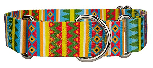 Country Brook Design | 1 1/2 Inch Spring Pines Martingale Dog Collar - Large ()