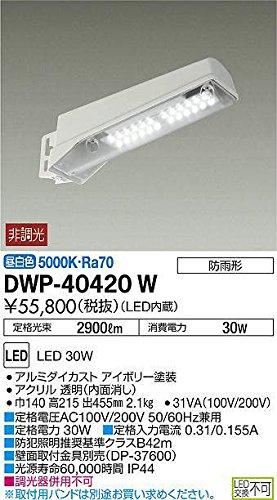 大光電機(DAIKO) LEDアウトドア防犯灯 (LED内蔵) LED 30W 昼白色 5000K DWP-40420W B073VFXK39 22614