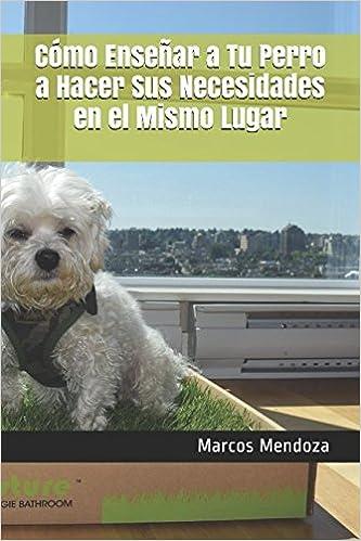 Cómo Enseñar a Tu Perro a Hacer Sus Necesidades en el Mismo Lugar (Spanish Edition): Marcos Mendoza: 9781520691374: Amazon.com: Books
