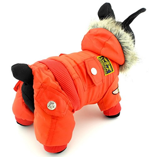 yorkie dog clothes - 3