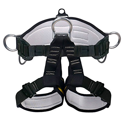 Climbing Harness - Ingenuity Professional Mountaineering Rock Climbing Harness,Rappelling Safety Harness - Work Safety Belt (Black 2) (Quick Rappelling Harness)